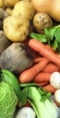 Vegetable Sidebar